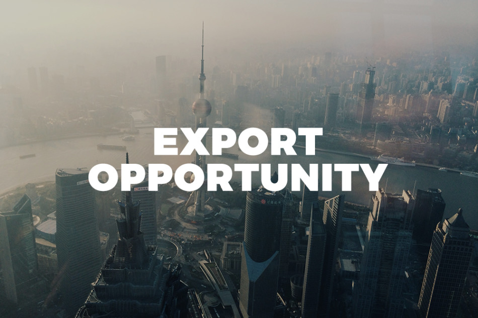 export opportunity - photo by Haley on https://unsplash.com/photos/YUnN0Z-1mcY